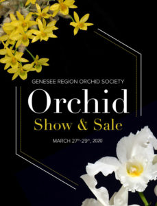 GROS 2020 Orchid Show poster image